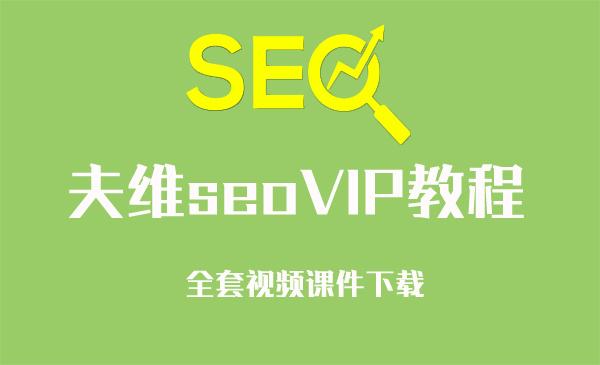 搜外网站长夫维seo教程VIP版本