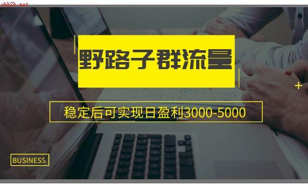 野路子群流量项目:稳定后可实现日盈利3000-5000